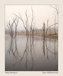 Misty Morning #1-blog