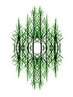 Symmetry 3 blog